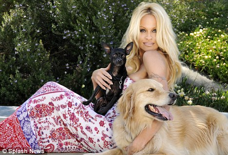 article 0 0A6FB910000005DC 320 468x319 Pamela Anderson Named Petas Person Of The Year