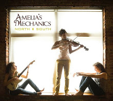 Amelia's Mechanics