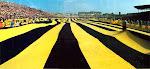 Sarı Lacivert Aşk