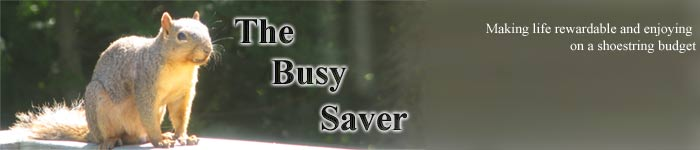 The Busy Saver
