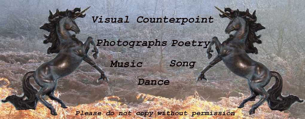 Visual Counterpoint