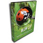 Blow Up 2 Enlargement Plugin