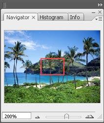 gambar palet navigator photoshop 4