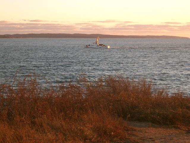 86 / Cape Cod
