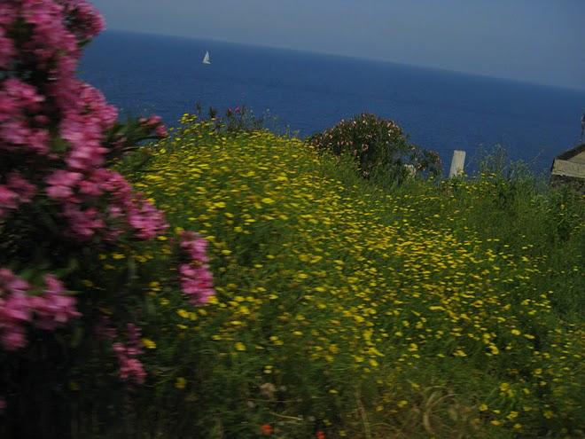 ITALY - A summer idyll. / @JDumas