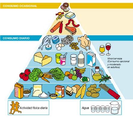 Alimentació i nutrició: La piramide dels aliments