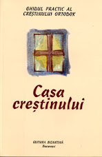 Casa cretinului