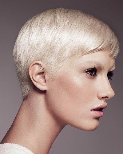 Labels: blonde short hairstyle 2010, short hairstyles