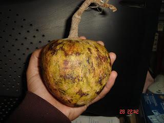 Timbiriches De Fruta Mexico Wwwimagenesmycom