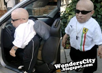 Verne troyer sex tape online in Perth