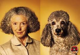 Hasta dicen que los animales de compañia comparten un cierto parecido al de sus dueños si no vean ,