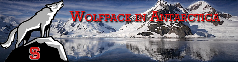 Wolfpack in Antarctica