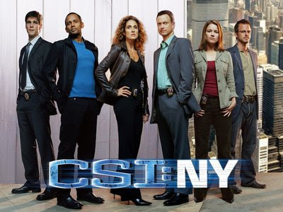 CSI New York Season 6 Episode 6