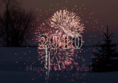 New Year 2010 hot photo
