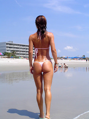 wicked weasel facebook kootation com wicked weasel jayne apps android