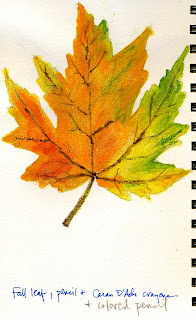 Sketches and Drawings fall leaves