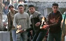 Palestine Blogers