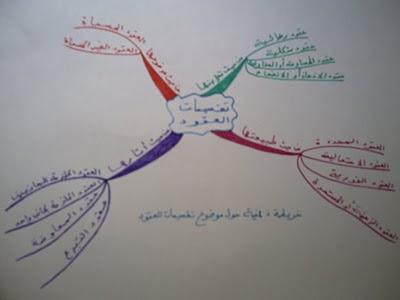 خريطة ذهنية حول موضوع تقسيمات العقود