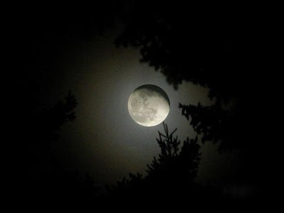 1228342805 vaotagnshhdshgvag Beautiful Moon Pictures