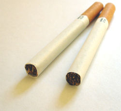 Two pieces of cigarettes.