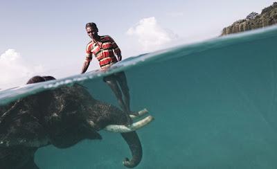 Nazru, seorang mahut (pemandu gajah), bersama gajahnya Rajan menyeberang lautan di Kepulauan Andaman.