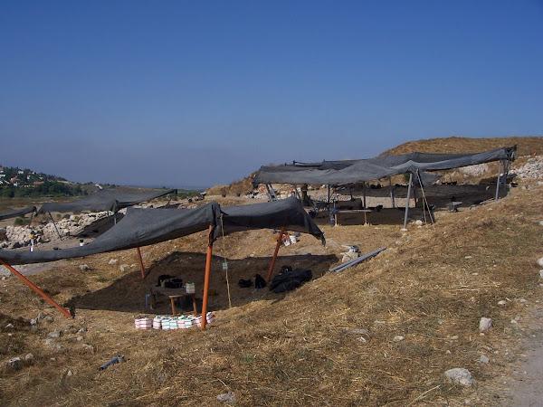 Dig site tents