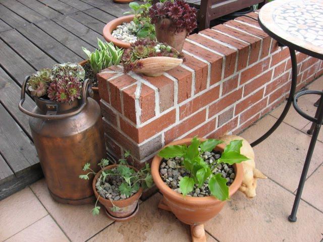 patchgarden gr ser und rankpflanzen gestickt. Black Bedroom Furniture Sets. Home Design Ideas