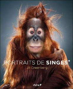Retratos de Macacos - Jill Greenberg