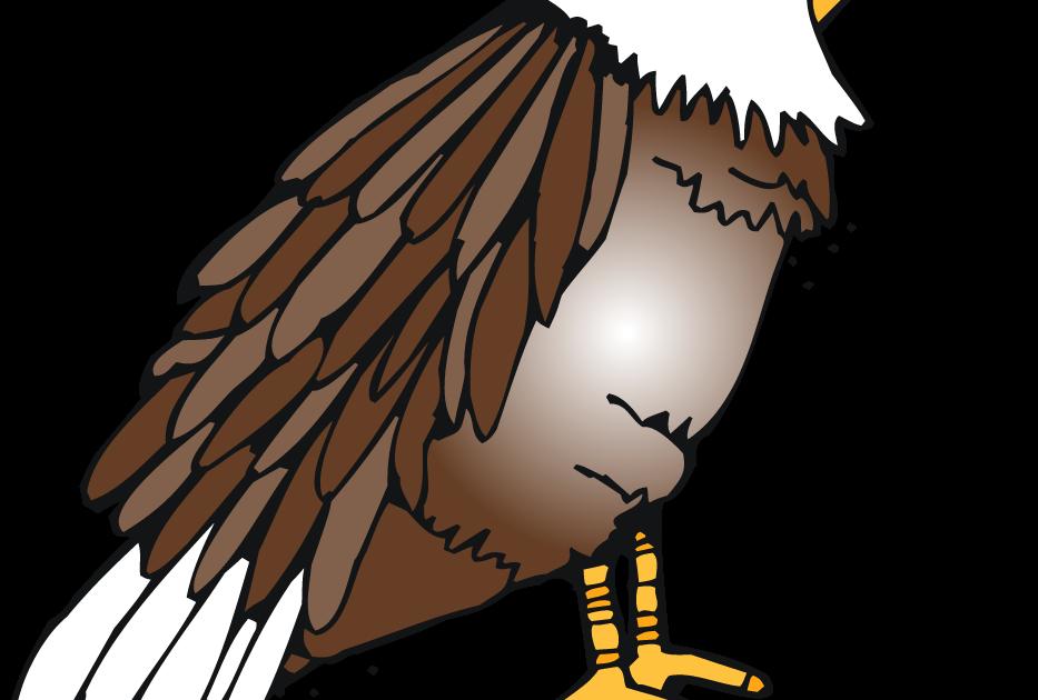 mrss-s: Tree Map: American Bald Eagle