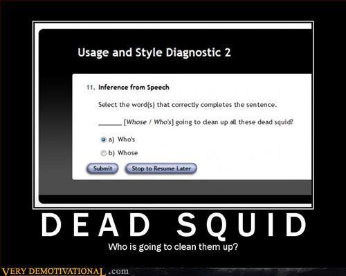 Dead Squid