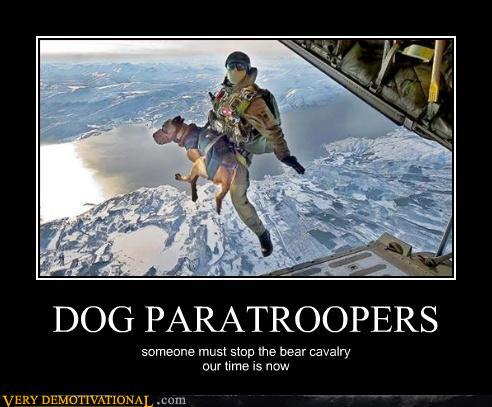 Dog Paratroopers