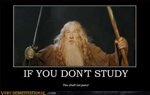 If You Don't Study
