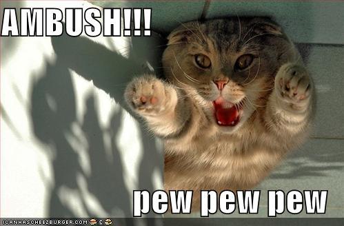 AMBUSH!!! pew pew pew