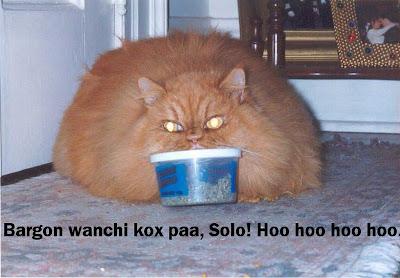 Bargon wanchi kox paa, Solo! Hoo hoo hoo hoo