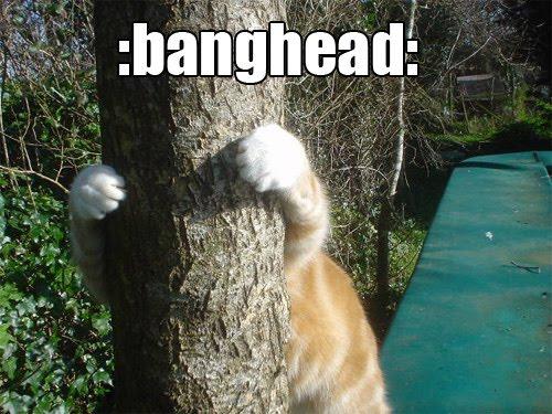 :banghead: