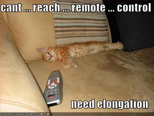 cant ... reach ... remote ... control need elongation