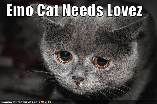 Emo Cat Needs Lovez