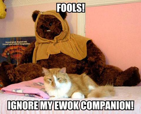 FOOLS! IGNORE MY EWOK COMPANION!