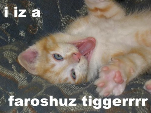 i iz a faroshuz tiggerrrr