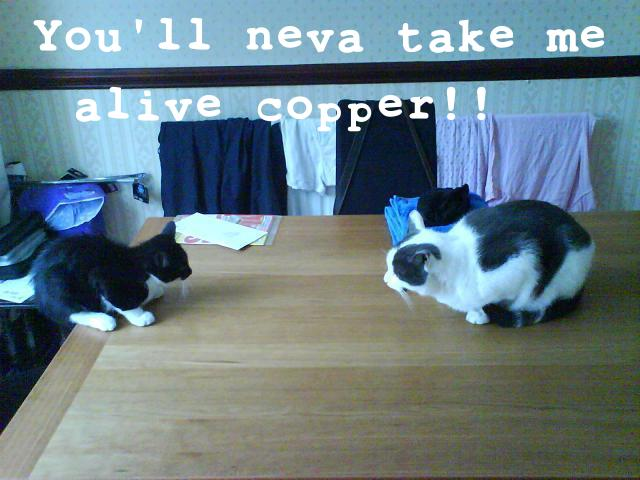 You'll Neva Take Me Alive Copper