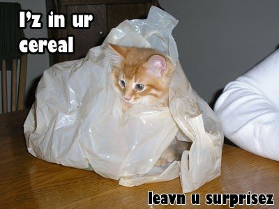 I'z in ur cereal