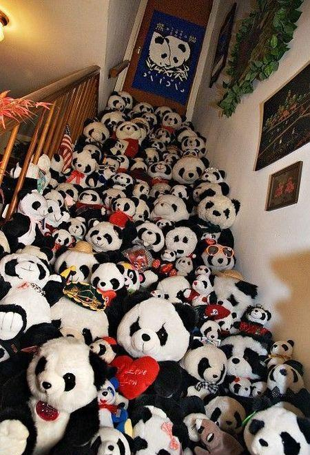 Huge Collection of Pandas on Stairs