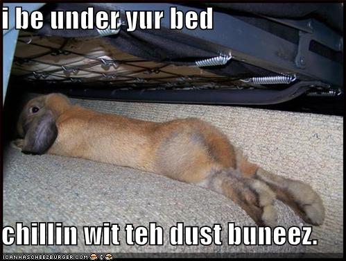 i be under yur bed chillin wit teh dust buneez