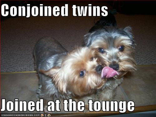 Conjoined twins Joined at the tounge