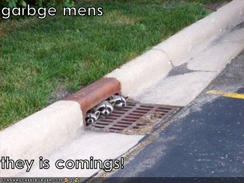 garbge mens they is comings!