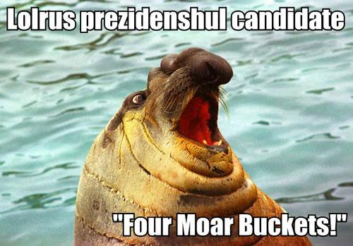 Lolrus prezidenshul candidate Four Moar Buckets!
