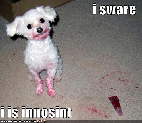i sware i is innosint