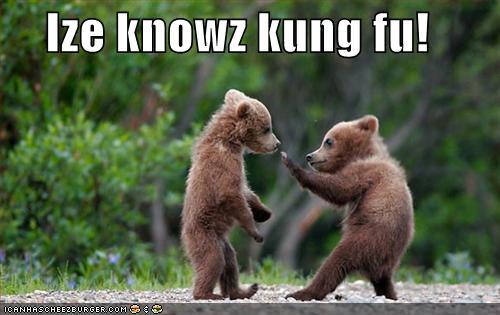Ize knowz kung fu!