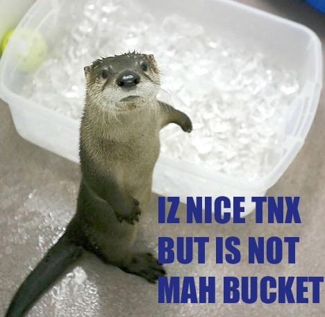 IZ NICE TNX BUT IS NOT MAH BUCKET