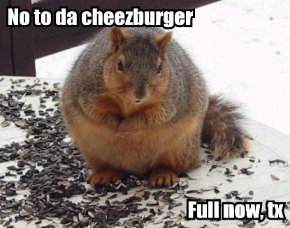 No to da cheezburger Full now, tx
